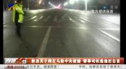 醉酒男子蹲在马路中央被撞 肇事司机逃逸后自首-190122