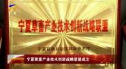 宁夏草畜产业技术创新战略联盟成立-190119