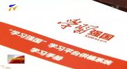 """宁夏推进""""学习强国""""平台应用工作-190114"""