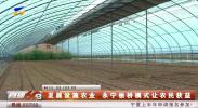 发展设施农业 永宁板桥模式让农民获益-190115