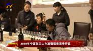 2019年宁夏贺兰山东麓葡萄美酒季开幕-190123