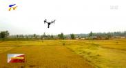 宁夏将全面推广无人机遥感测量 助力农业调查统计工作-190226