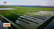 宁夏将以三个区域为重点改善生态环境质量-190225