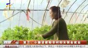 贺兰:小额贷款助农村妇女创业就业-190216