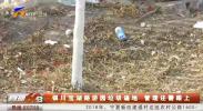 银川宝湖路游园垃圾遍地 管理还需跟上-190226