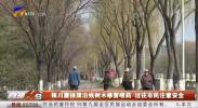 银川唐徕渠沿线树木修剪喷药 过往市民注意安全-190319
