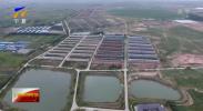 宁夏农业科技进步贡献率59.2% 高于全国平均水平-190330