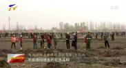 宁夏举行植树节宣传活动-190312