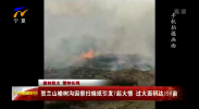 (森林防火 警钟长鸣)贺兰山榆树沟因祭扫烧纸引发7起火情 过火面积达198亩-190404