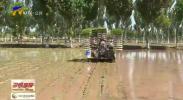 吴忠市利通区:主要粮食作物耕种收综合机械化率达到91.5%