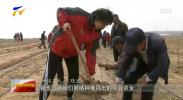 西部绿化生态扶贫公益项目五年为宁夏捐助两千多万元-190504