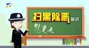 """【扫黑除恶划重点】(二)""""扫黑""""与""""打黑""""有什么区别?-190601"""