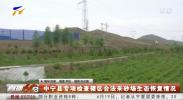中宁县专项检查辖区合法采砂场生态恢复情况-190620
