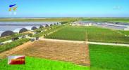 宁夏发布2018年环境质量状况-190601