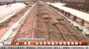 海原:赤松茸种植开辟致富新路子-190605