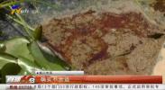 银川市南塘湖公园有人偷倒餐厨垃圾 偷倒餐厨垃圾必须罚-190710