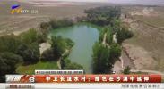 中卫长流水村:绿色在沙漠中延伸-190718