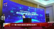 2019银川城市能源互联网论坛举行-190705