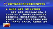 """咸辉:纵深推进""""放管服""""改革 务实办好中阿博览会-190703"""