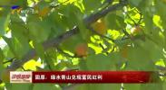 固原:绿水青山兑现富民红利-190804