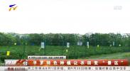 """平罗特色种植让农田变""""景区""""-190802"""