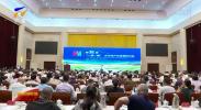 """第五届""""一带一路""""文化与产业发展研讨会在银川举行-190811"""