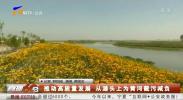 推动高质量发展 从源头上为黄河截污减负-190924