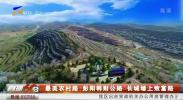 最美农村路:彭阳韩财公路 长城塬上致富路-190928