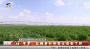 平罗:红翔新村移民生活变了样-191005