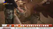 彭阳:草畜产业发展让农民走上致富路-191019