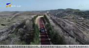 最美农村路:彭阳韩财公路 长城塬上致富路-191004