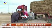 中宁:企业同频共援助农脱贫-191021