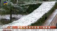 固原市迎来今冬第一场降雪-191016