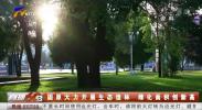 固原大力开展生态造林 绿化面积创新高-191123
