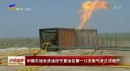 中国石油长庆油田宁夏油区第一口天然气井正式投产-191118