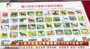 《银川市养犬管理条例》11月1日实行-191101