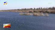 自治区政协调研重点入黄排水沟污染治理-191205