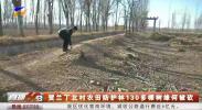 贺兰丁北村农田防护林130多棵树缘何被砍-191210