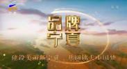 品牌宁夏-191225