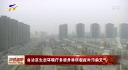 自治区生态环境厅多措并举积极应对污染天气-200113