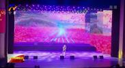 """""""唱响宁夏山河川""""宁夏原创歌曲演唱会在银川举行-200107"""