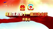 自治区政协十一届三次会议开幕会