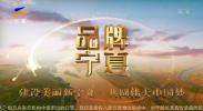 品牌宁夏-200129