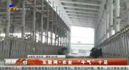 """互联网+农业 """"牛气""""十足-200124"""