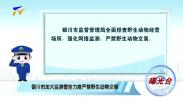 曝光台:银川市加大监测管控力度严禁野生动物交易-200222
