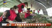 王海燕捐赠四万斤大葱驰援武汉-200323