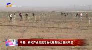 宁夏:枸杞产业兜底专业化服务助力脱贫攻坚-200312