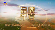 品牌宁夏-200310