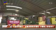 宁夏黄河银行:金融贷款助农增收 小康路上你我同行-200328