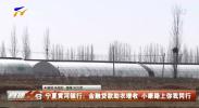 宁夏黄河银行:金融贷款助农增收 小康路上你我同行-200324